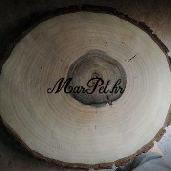 natpis u drvetu